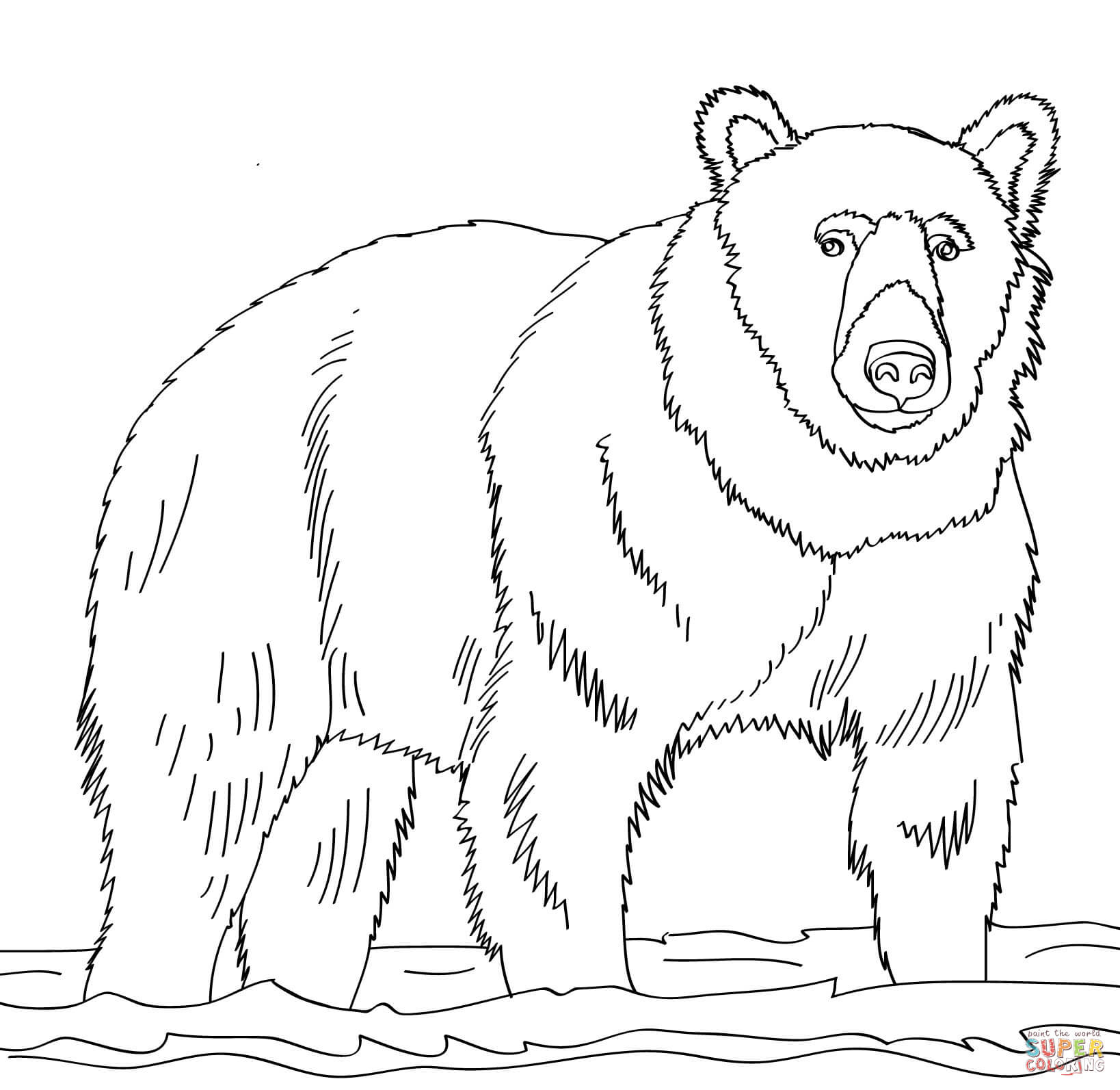 1638x1593 Brown Bear Coloring Pages Bears Free Inside