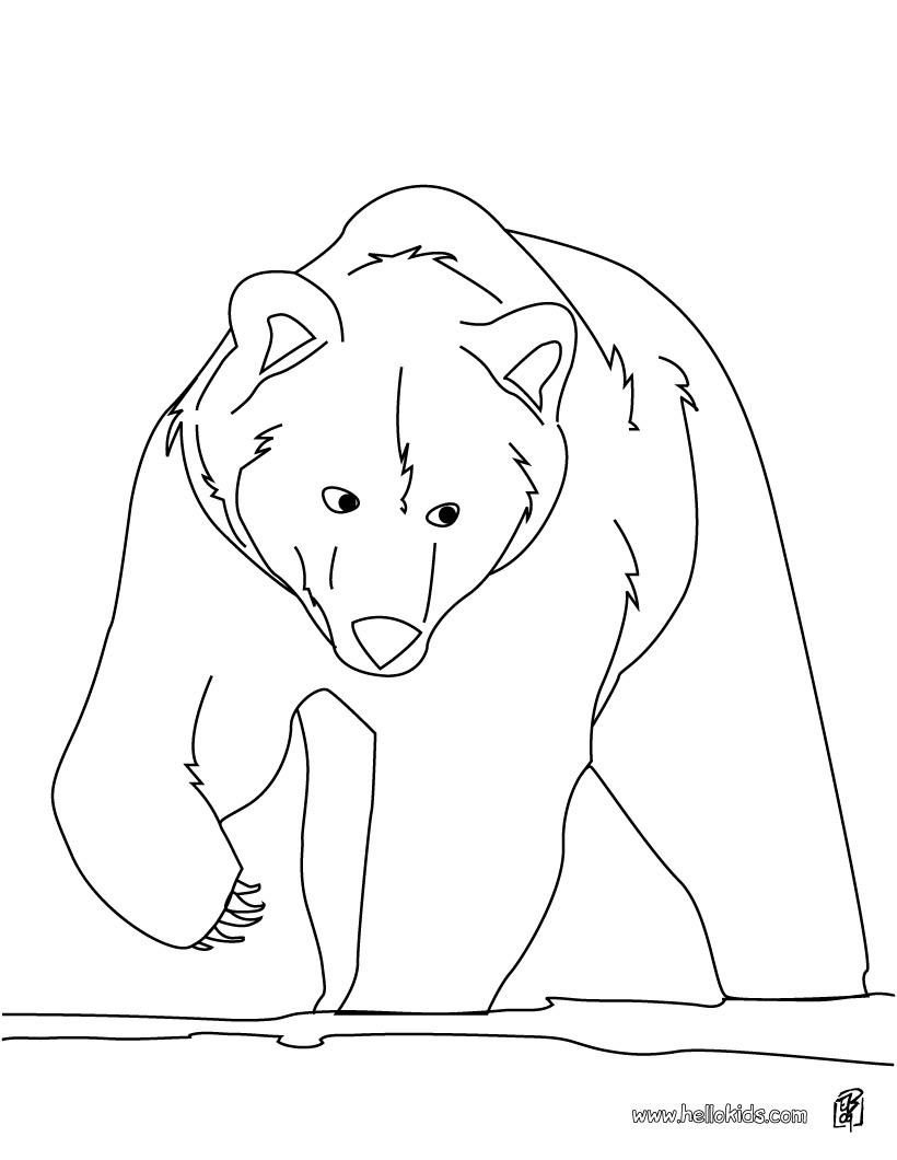 820x1060 Brown Bear Coloring Page More Forest Animals Coloring Sheets