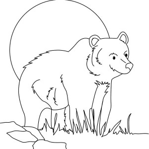 300x300 Hungry Brown Bear Coloring Pages Best Place To Color