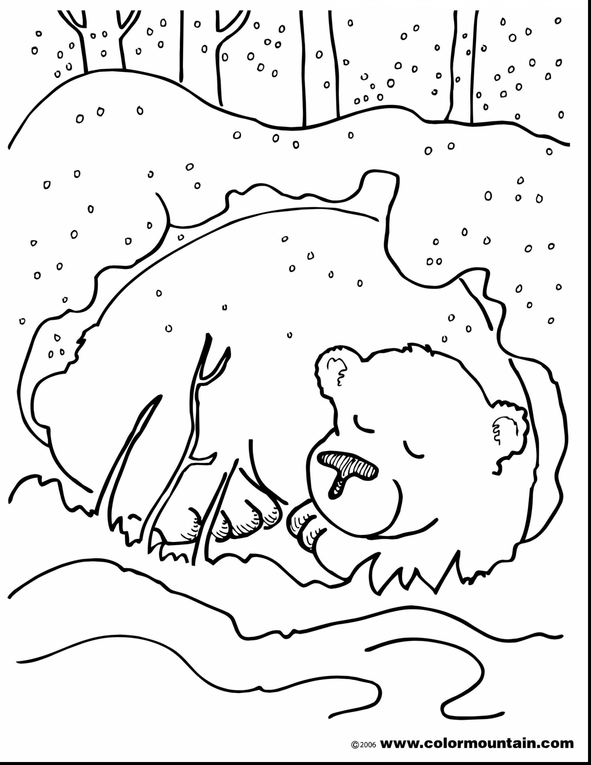 1980x2561 Brown Bear Brown Bear Coloring Pages