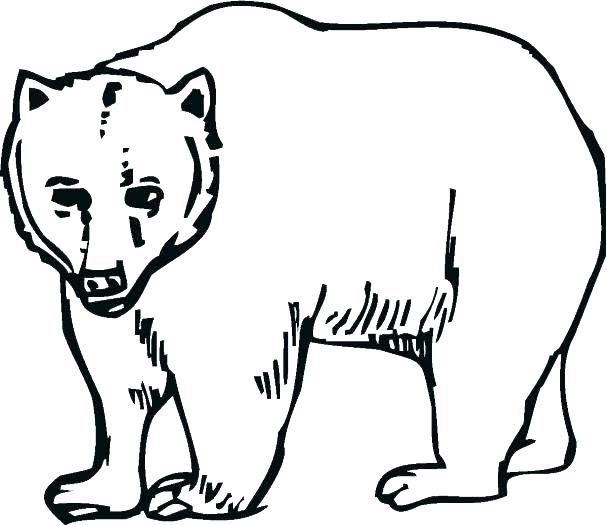 607x525 Louisiana Coloring Pages Black Bear Coloring Page Photo Gallery