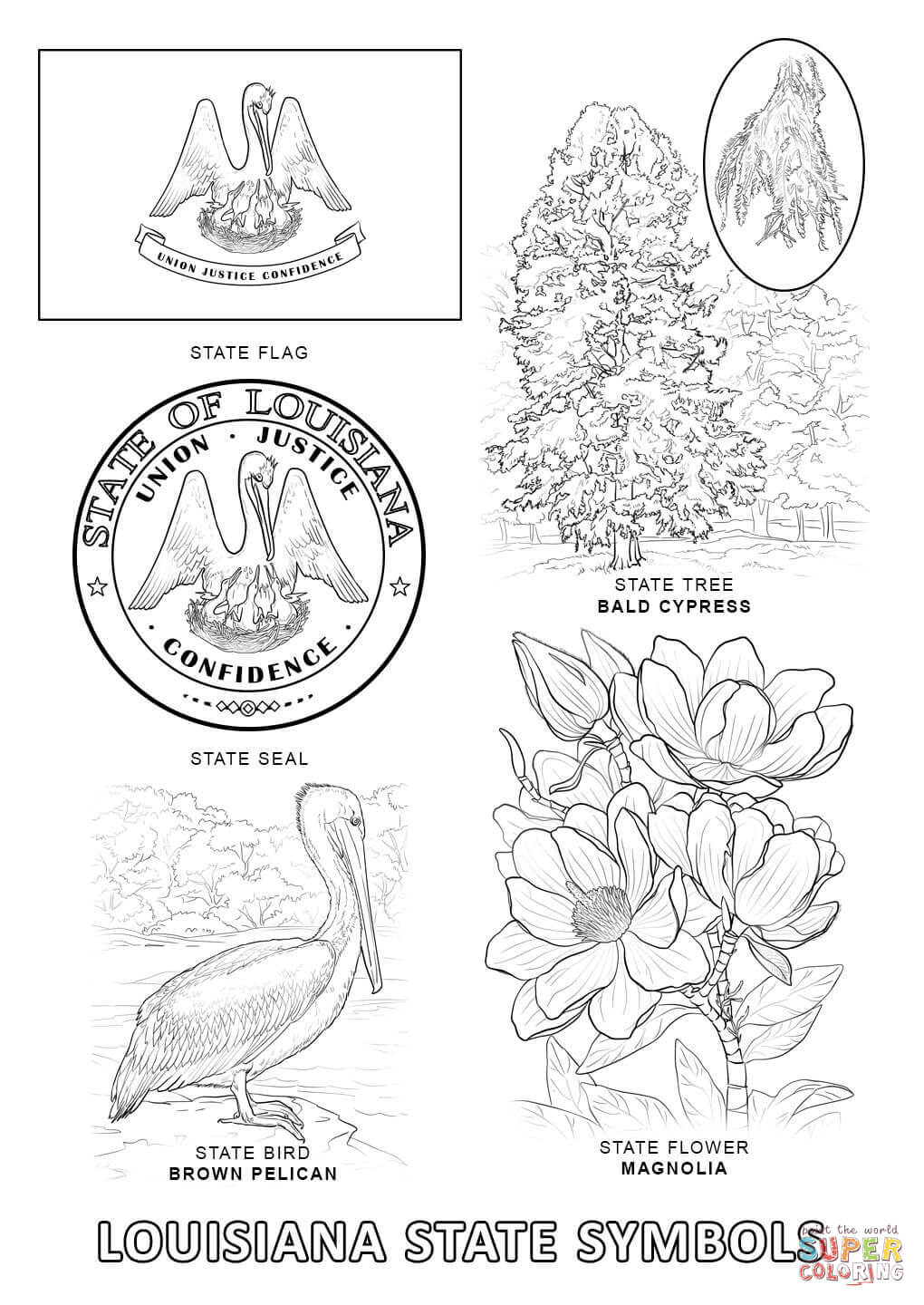 1020x1440 Louisiana State Symbols Coloring Pages