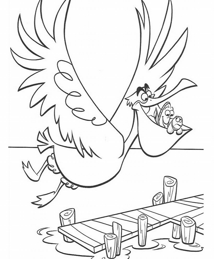 893x1080 Maxresdefault Unusual Pelican Coloring Pages Halo Eastern Brown