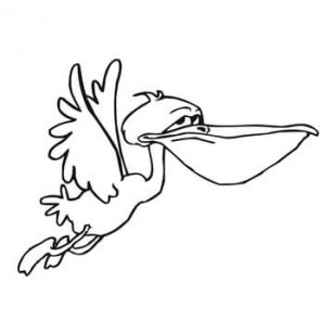 308x308 Pelican Animal Coloring Pages