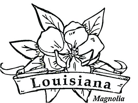 480x360 State Bird And Flower Coloring Pages Arkansas Coloring Pages State