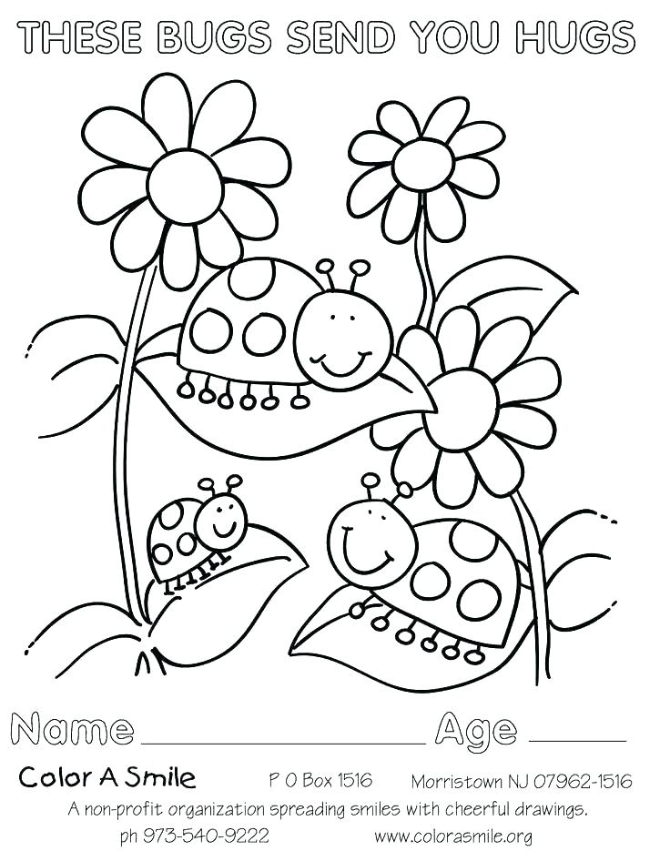 736x935 Girl Scout Coloring Pages For Brownies Brownie Cookie Page Daisy