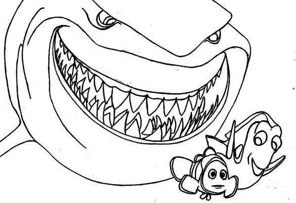 600x412 Bruce The Shark Coloring Pages
