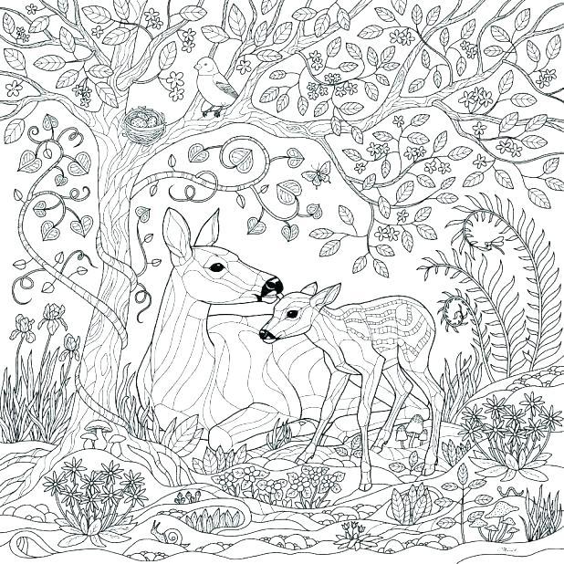 618x618 Deer Hunting Coloring Pages Mistletoe Coloring Page Hunting Deer