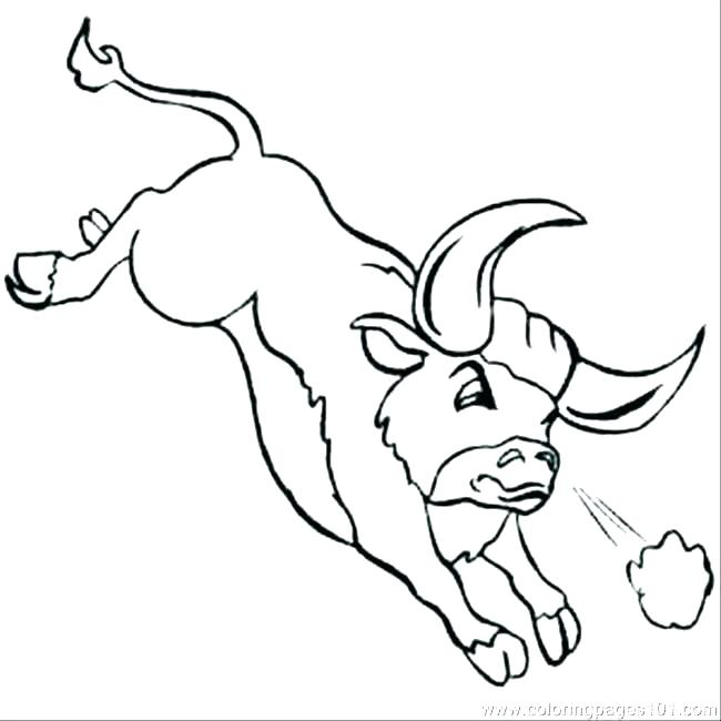 650x650 Coloring Pages Of Bulls Bulls Bucking Bull Mammals Coloring Pages