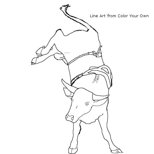 500x500 Bucking Bull Coloring Page Learning Support Resources