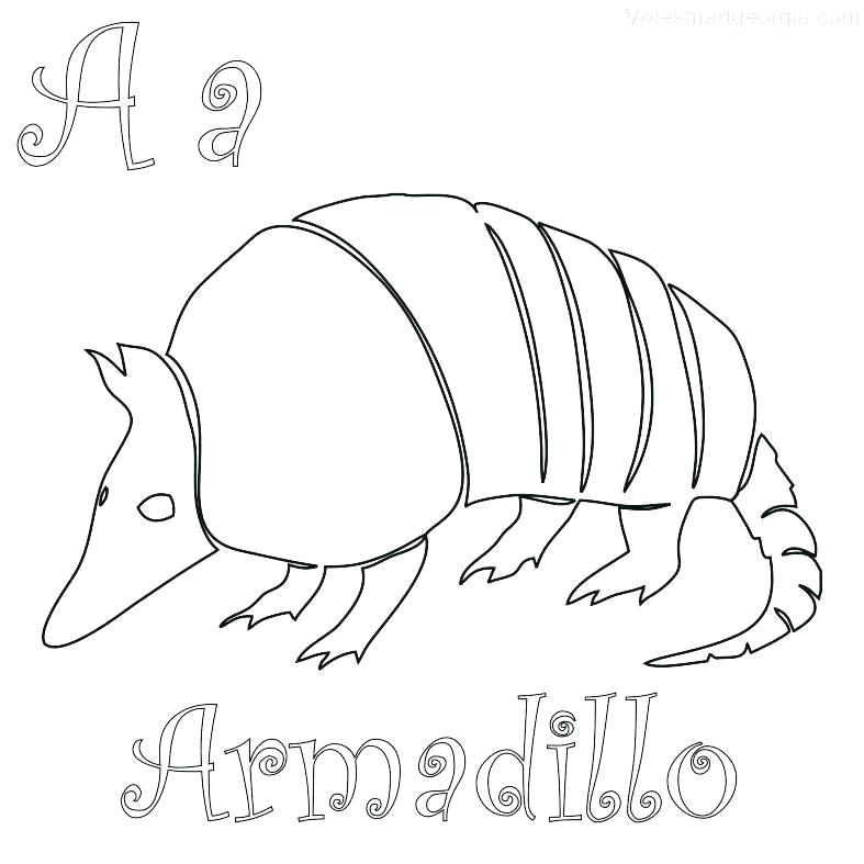 787x787 Rodeo Coloring Pages Armadillo Coloring Page Armadillo Coloring