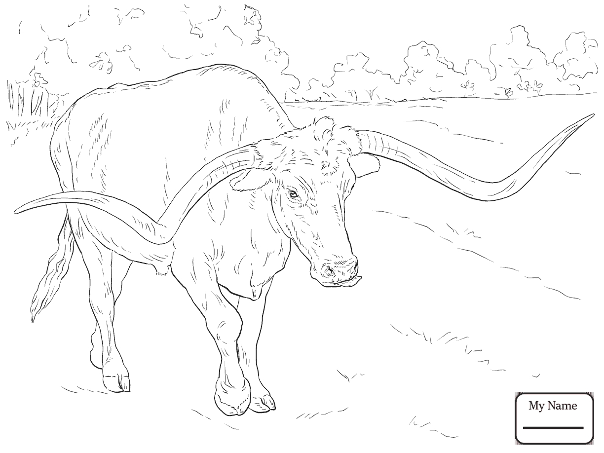 1224x918 Bucking Bull Coloring Pages