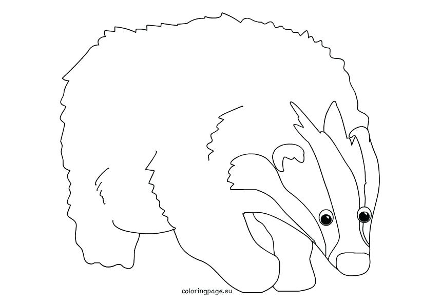822x595 Badger Coloring Pages Badger Animal Coloring Pages Cartoon Animal