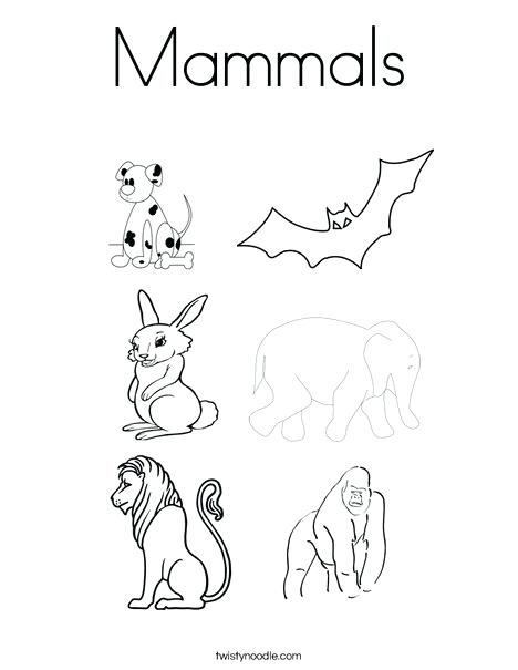 468x605 Badger Coloring Pages Cute Woodland Animals Cute Deer Badger Stock