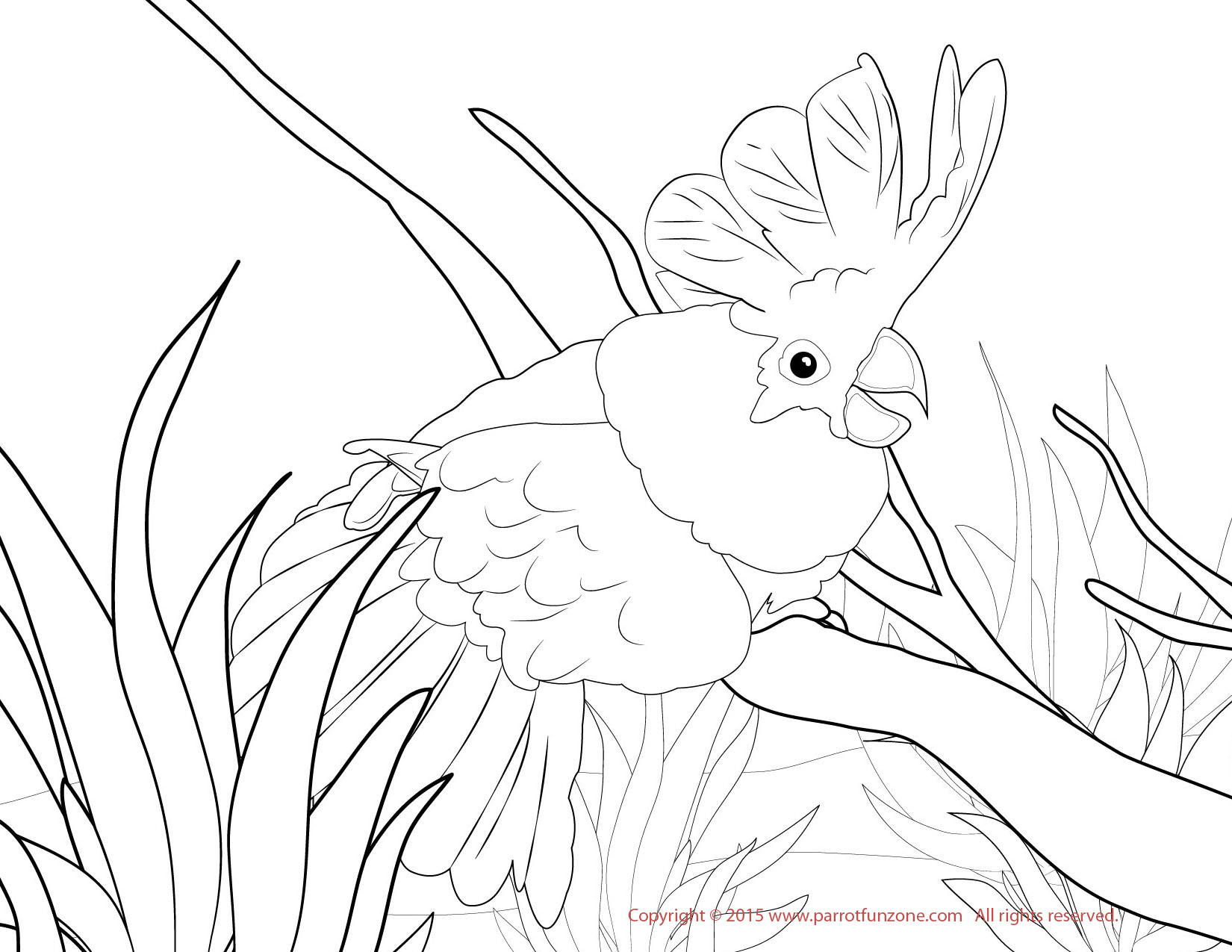 1650x1275 Coloring Pages