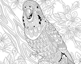340x270 Hornbill Bird Coloring Pages Animal Coloring Book Pages
