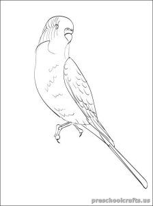 224x300 Swallow Printable Coloring Pages For Kid Swallow Coloring Pages
