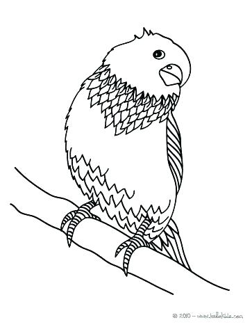 363x470 Bird Coloring Pages Plus Coloring Sheets Baby Bird Colouring
