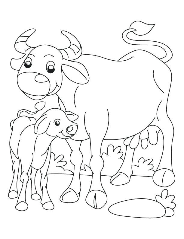 612x792 Buffalo Coloring Page Buffalo Coloring Page Buffalo And Calf