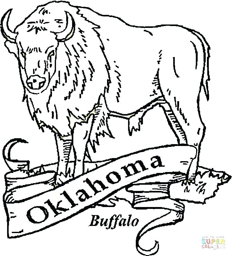 750x826 Buffalo Coloring Page Buffalo Coloring Page Click The Buffalo