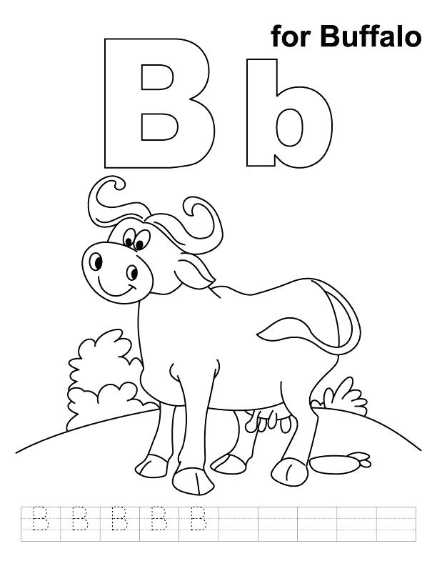 612x792 Buffalo Coloring Pages Buffalo Coloring Page Buffalo Coloring