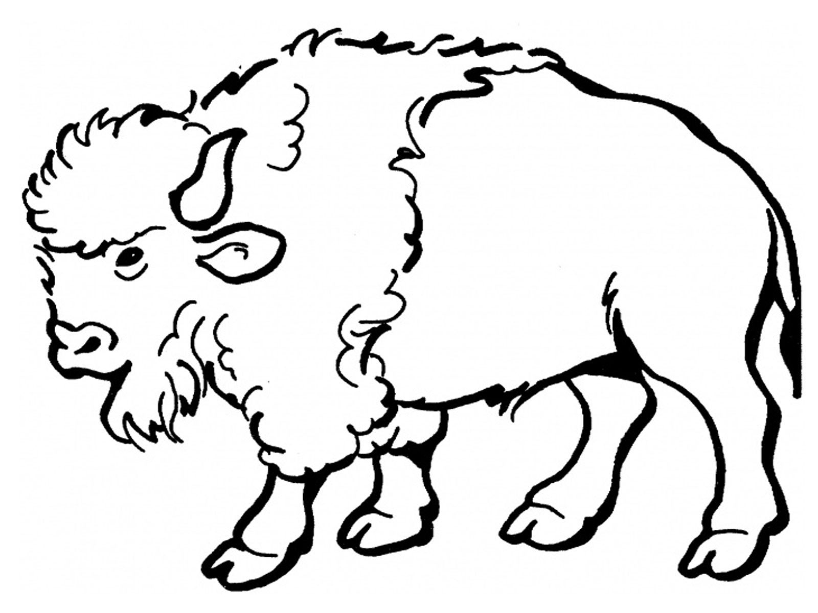 1600x1200 Free Printable Bison Coloring Pages For Kids Easy Art, Rustic