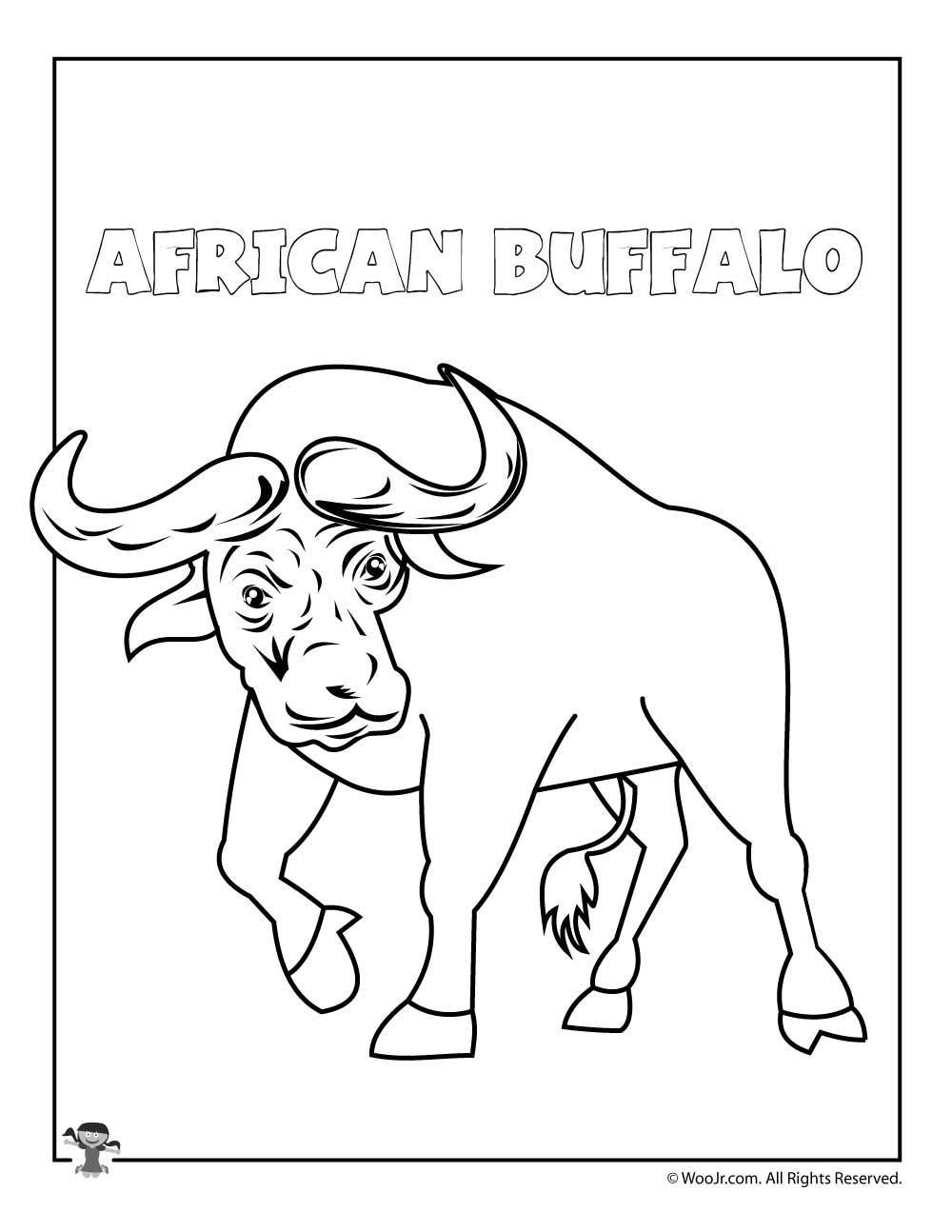 1000x1294 Unique Buffalo Coloring Page Design Printable Coloring Sheet