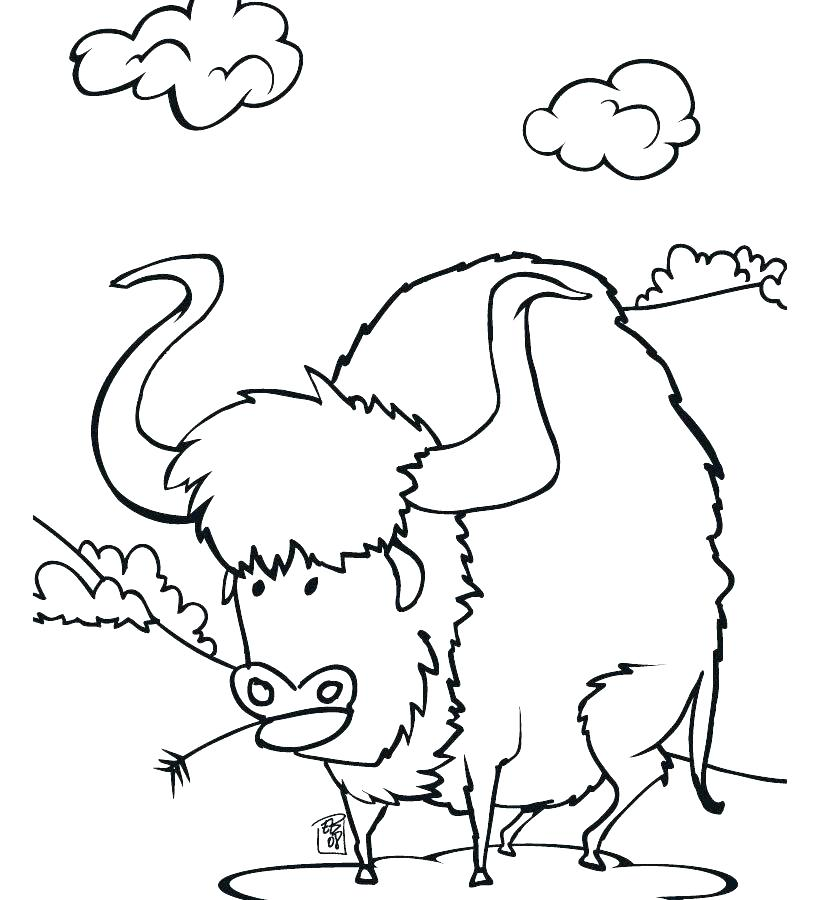 820x900 Buffalo Coloring Page Buffalo Coloring Page Bison Coloring Pages