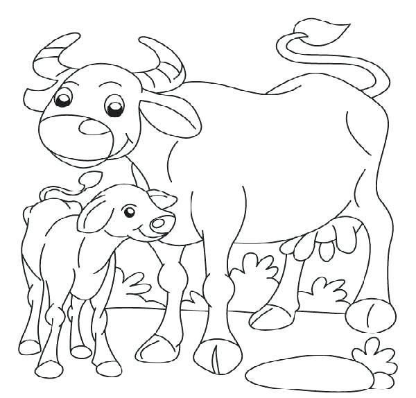 600x574 Buffalo Coloring Page Buffalo Coloring Pages Coloring Pages