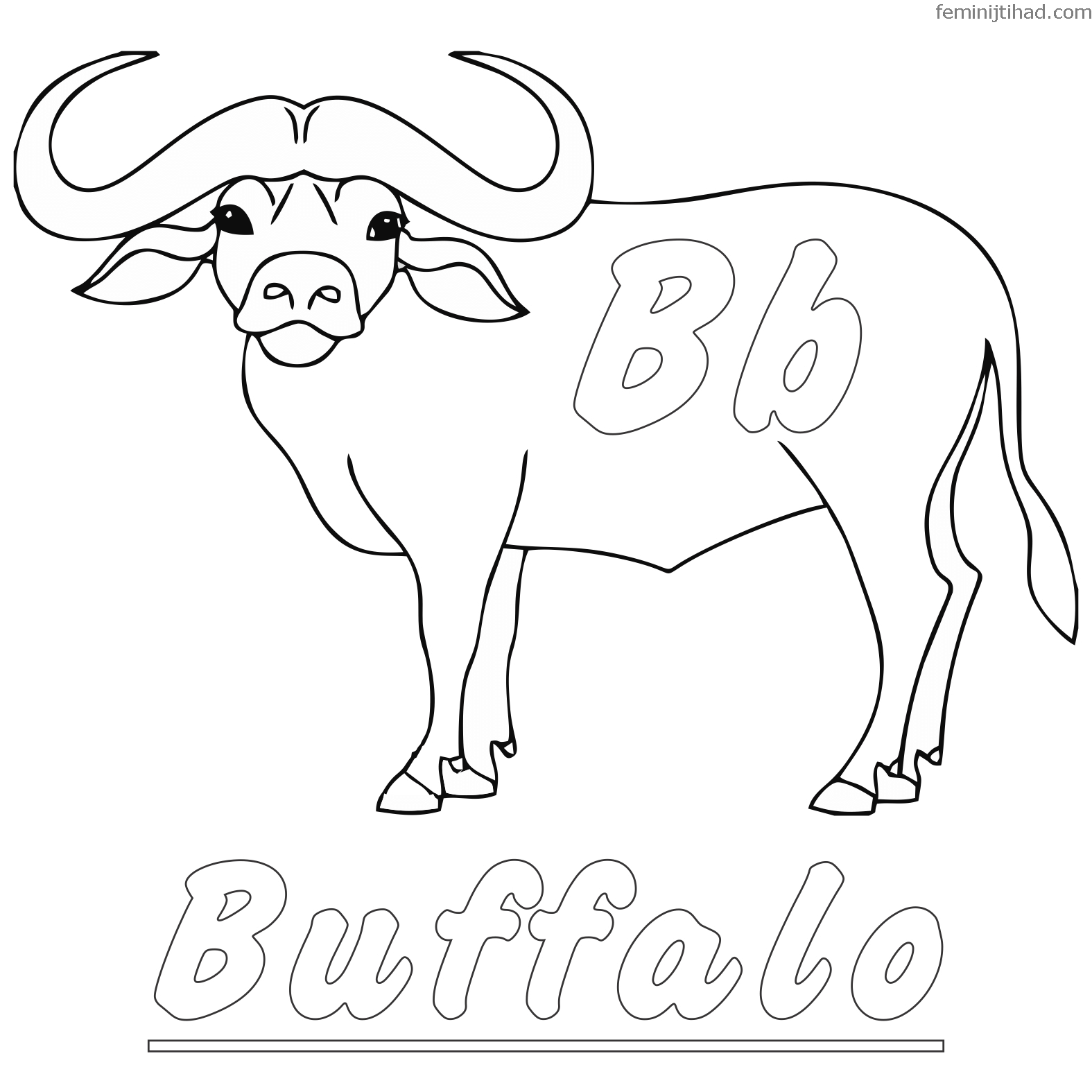 1575x1575 Free Buffalo Coloring Pages To Print Coloring Pages For Kids