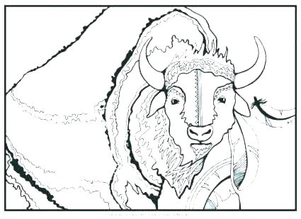 425x309 Bison Coloring Page Bruins Coloring Pages Bruins Logo Coloring