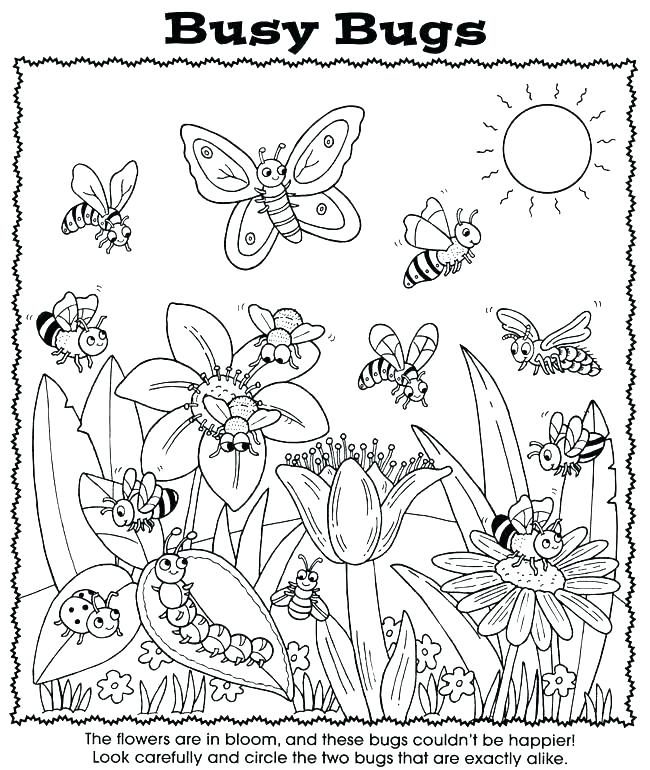 650x770 Bugs Coloring Pages Bugs Coloring Pages Preschool Page Bug Sheets