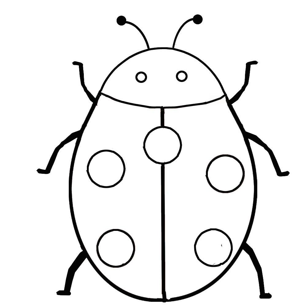 1000x1000 Bugs And Insects Coloring Pages Cats Too Insects
