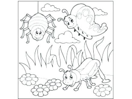 439x330 Entertaining Bugs Coloring Pages Best Of Entertaining Bugs