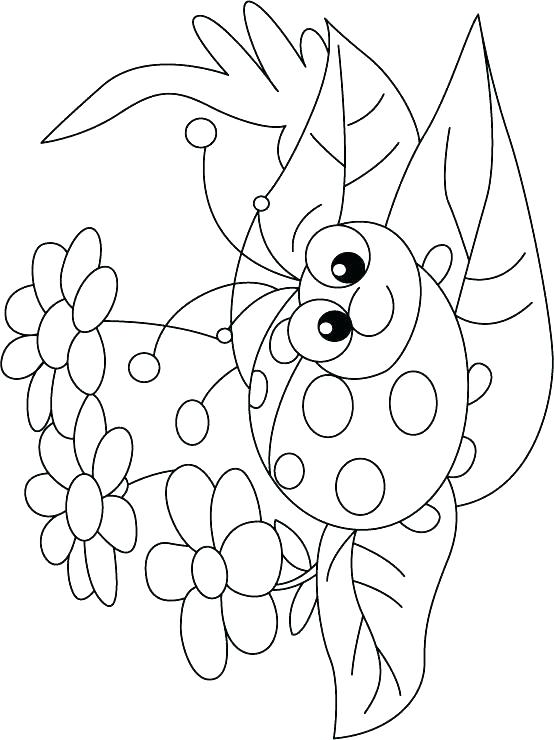 554x740 Insect Coloring Pages Bugs And Insects Coloring Pages Printable