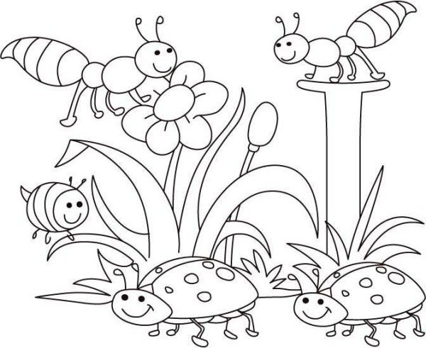 600x491 Spring Bugs Coloring Pages Activities For Classroom