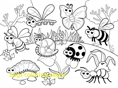 500x375 Bugs Coloring Pages Preschool Archives