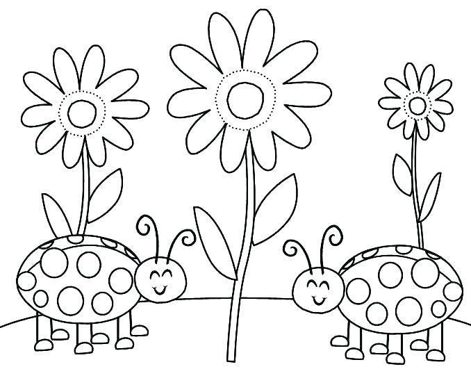 678x531 Bug Coloring Pages For Preschool Coloring Page Bugs Little Bugs