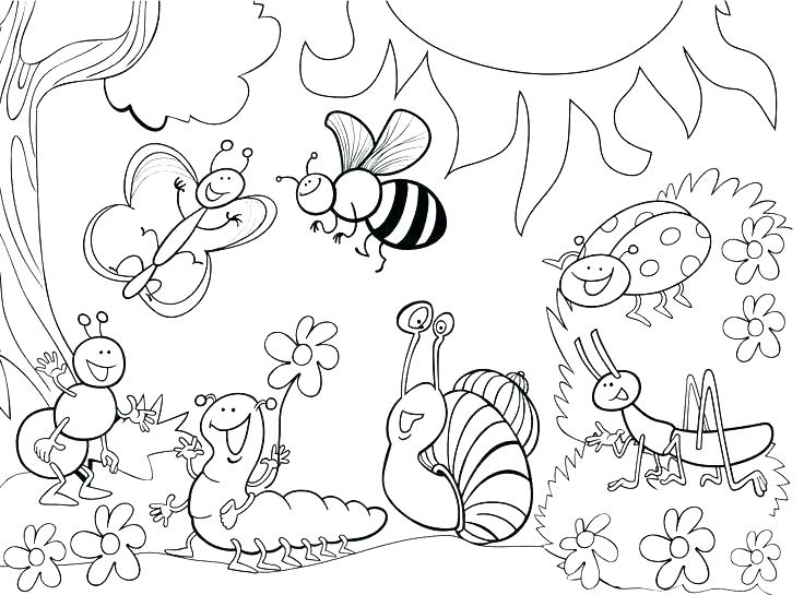 736x545 Bugs Coloring Page Insect Coloring Page Free Printable Insect