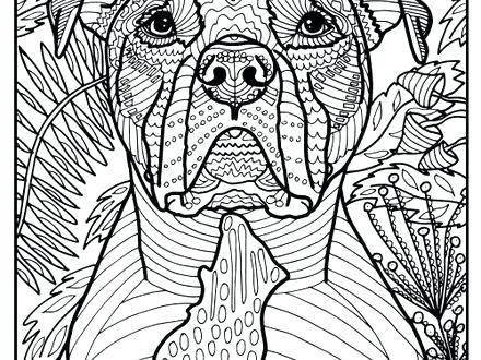 440x330 Bull Coloring Page Free Printable Pit Bull Terrier Coloring Page