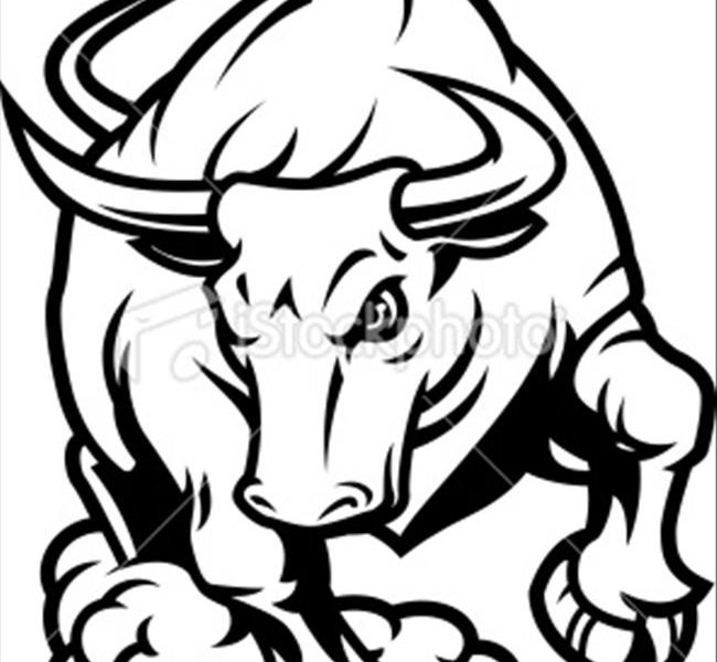 650x600 Bull Coloring Pages