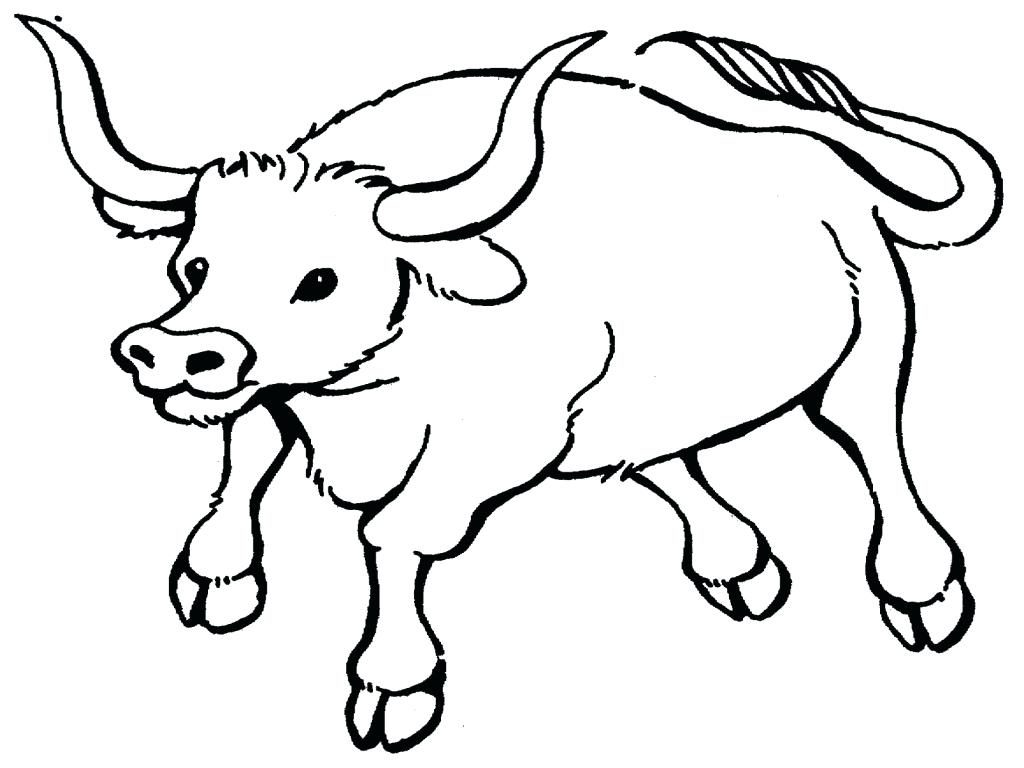 1024x768 Coloring Page Chicago Bulls Coloring Pages Bull Printable