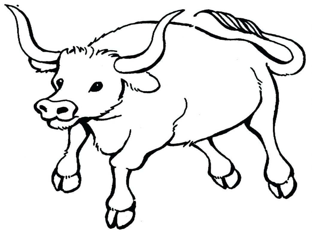 1043x782 Chicago Bulls Printable Coloring Pages Drawn Page Pencil