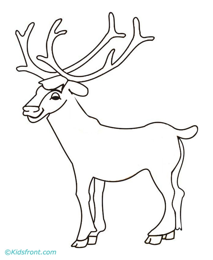720x880 Elk Coloring Pages Selection Free Coloring Pages