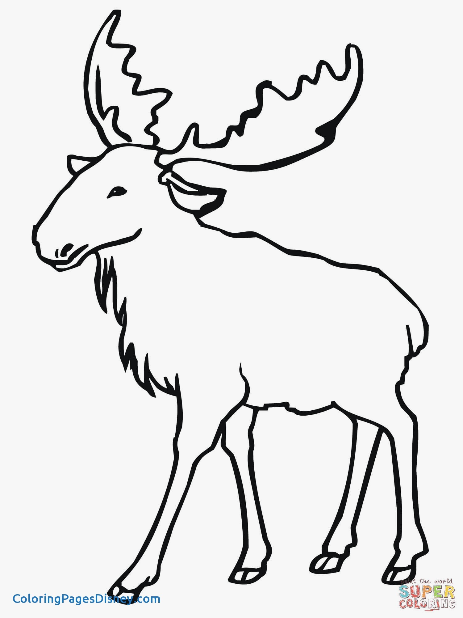 1500x2000 Elk Coloring Pages Fresh Eurasian Elk Moose Coloring Page