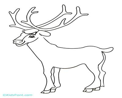 400x322 Bull Elk And Baby Elk Coloring Pages Download Print Online Bull