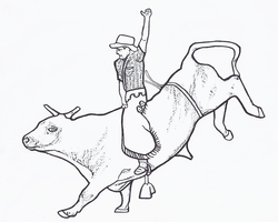 250x200 Bull Riding Coloring Page Free Printable Bull Riding Toys