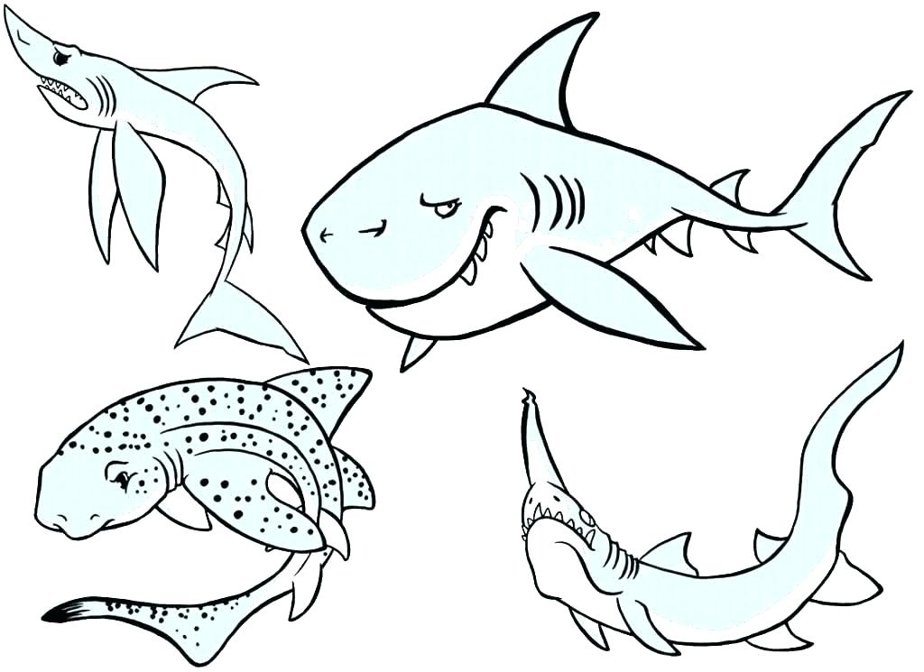 1024x745 Coloring Pages Shark Shark Coloring Pages Printable Shark Coloring
