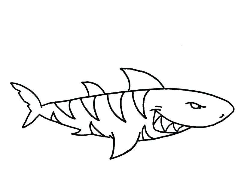792x600 Shark Color Pages Tiger Shark Coloring Pages Drawn Tiger Shark
