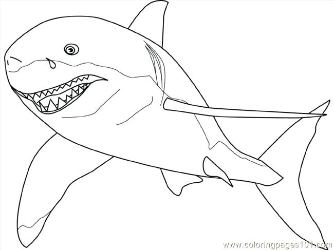 650x487 Shark Coloring Pages Free Printable Shark Coloring Pages Images
